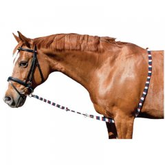 Imperial Riding - Longehjælp